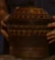 Survivor fiji urn