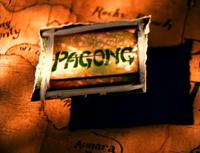 Pagong into shot