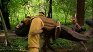 Yellow team nicaragua