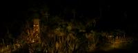 Survivor ghost island tc