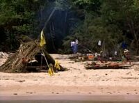 Pagong camp 1