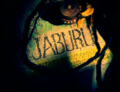 Jaburu into shot