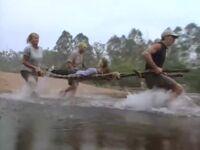 Ogakor rescue australia