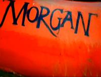 Morgan into shot