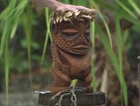 Cook Islands Immunity Idol