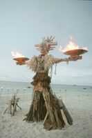 Borneo bonfire
