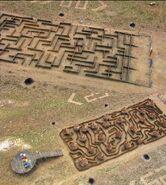 The maze gabon