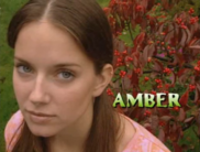 Amber introduced