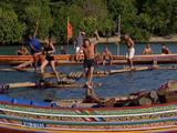 Pilfering Pirates