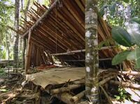 Pagong camp