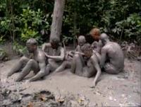 Pagong muddy 2
