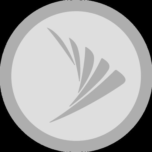 Badge sprint i.png