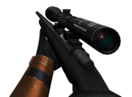 Sniper Rifle View.png