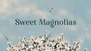 Sweet magnolias logo 2.png