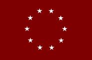 CSEflagproposal29