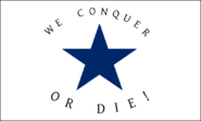 BlueStarFlagbattleflag