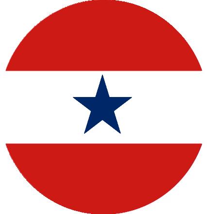 Confederate Naval Air Service