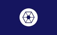 CISflag