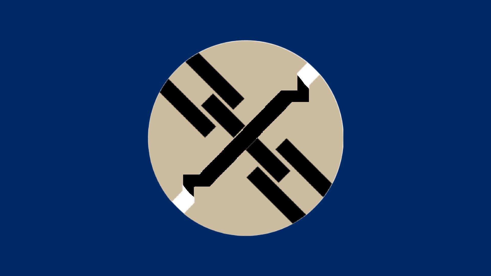 Diversity Alliance (Fanon)