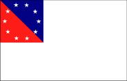 CSEbattleflag38