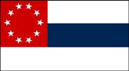 CSEflag1stvariant