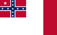 CSEflag2bloodstainedrectangular