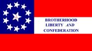 10thZarkanKingdomInfantryflag