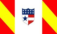 CSEflagproposal3