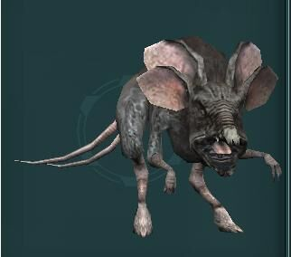 Womp Rat Swg Wiki Fandom They had muddy brown fur and long whiskers, and lived in swamps and bogs. womp rat swg wiki fandom