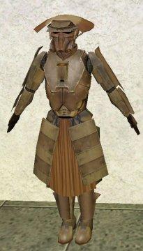 RIS armor