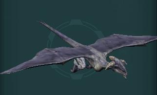 Reptilian Flyer Model