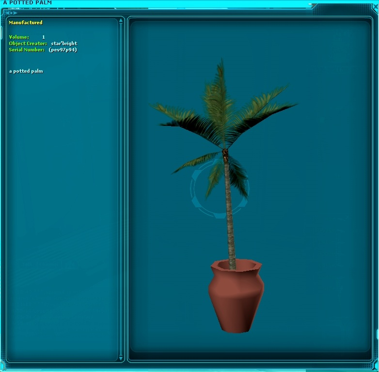 A Potted Palm