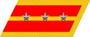 Senior Lieutenant collar insignia (PRC).jpg