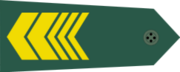 Warrant Officer First Class rank.png
