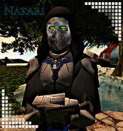 Nakari1