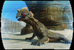 Codex Rill Star Wars The Old Republic Wiki Ones that lived in beggar's canyon, ones that lived in the jundland wastes, and swamp womp rats. star wars the old republic wiki gamepedia