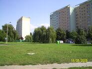 Szczecin w sierpniu (38)