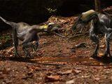Tyrannoraptora