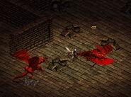 Le-debutant-dragons