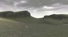 End field