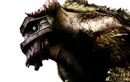 Video-games-shadow-of-the-colossus-HD-Wallpapers