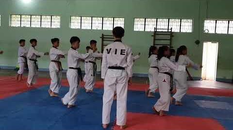 Bigak_3_-_Vietnam_Poomsae_Team_(1)