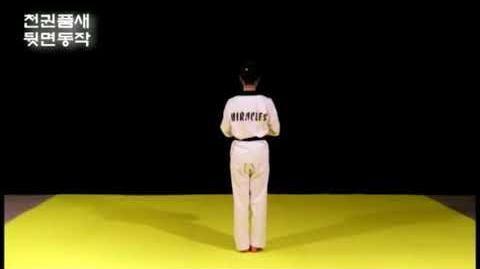 CHEONKWON_Kang_Su_Ji_Taekwondo_Black_Belt_Poomsae_07