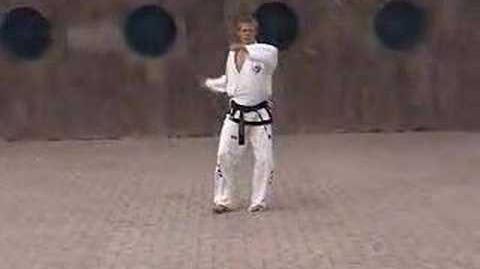 International_Taekwondo_Federation_(ITF)_Pattern_Ko_Dang