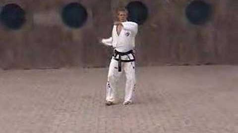 International Taekwondo Federation (ITF) Pattern Ko Dang