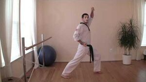TaeKwonDo_Front_Stance_and_Walking_Stance_Tutorial