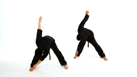 How to Do Basic Standing Stretches Taekwondo Training