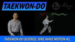 Taekwon-Do_Science_Sine_Wave_Motion_1