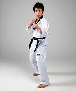 Kicking Stance Taekwondo Wiki Fandom