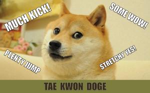 TaeKwonDoge.png